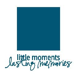 LMTPhotography logo